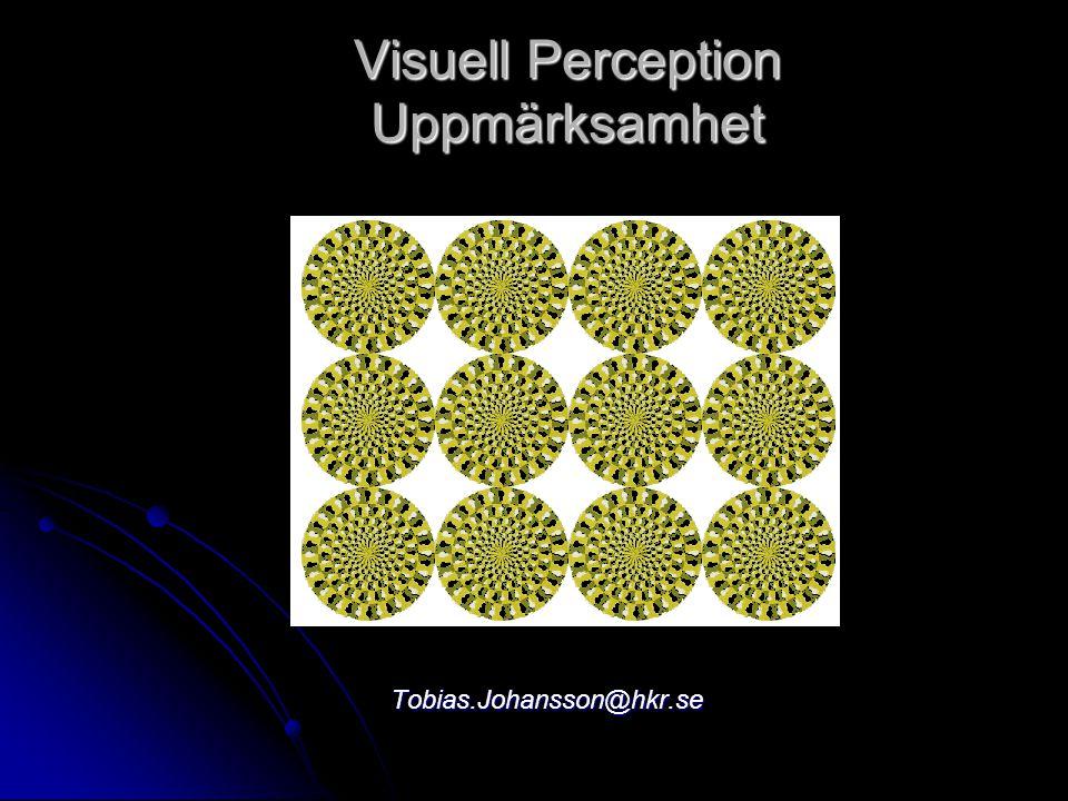 Visuell Perception Uppmärksamhet