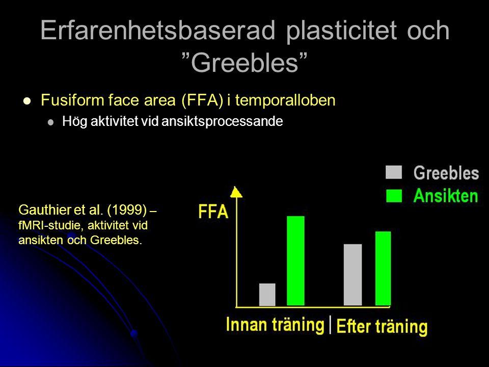 Erfarenhetsbaserad plasticitet och Greebles