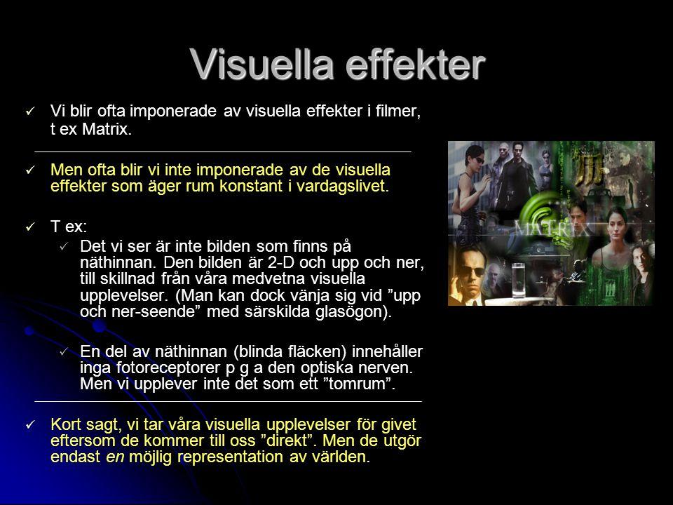 Visuella effekter Vi blir ofta imponerade av visuella effekter i filmer, t ex Matrix.
