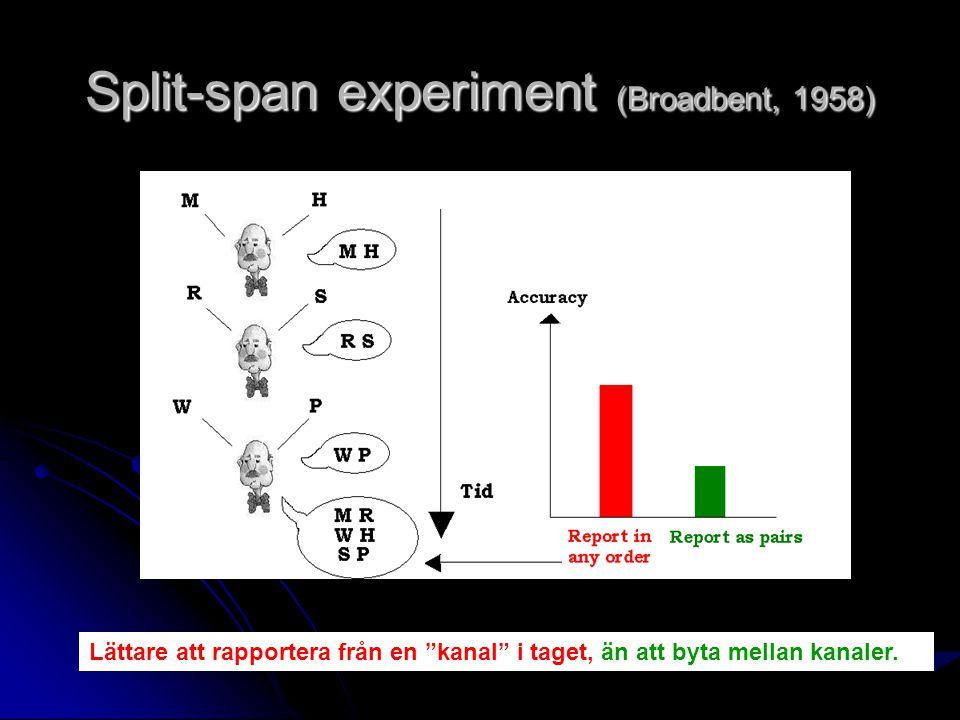 Split-span experiment (Broadbent, 1958)