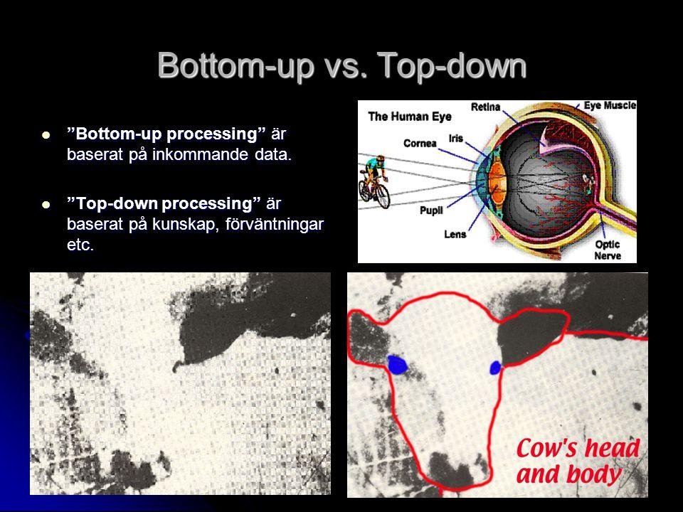 Bottom-up vs. Top-down Bottom-up processing är baserat på inkommande data.