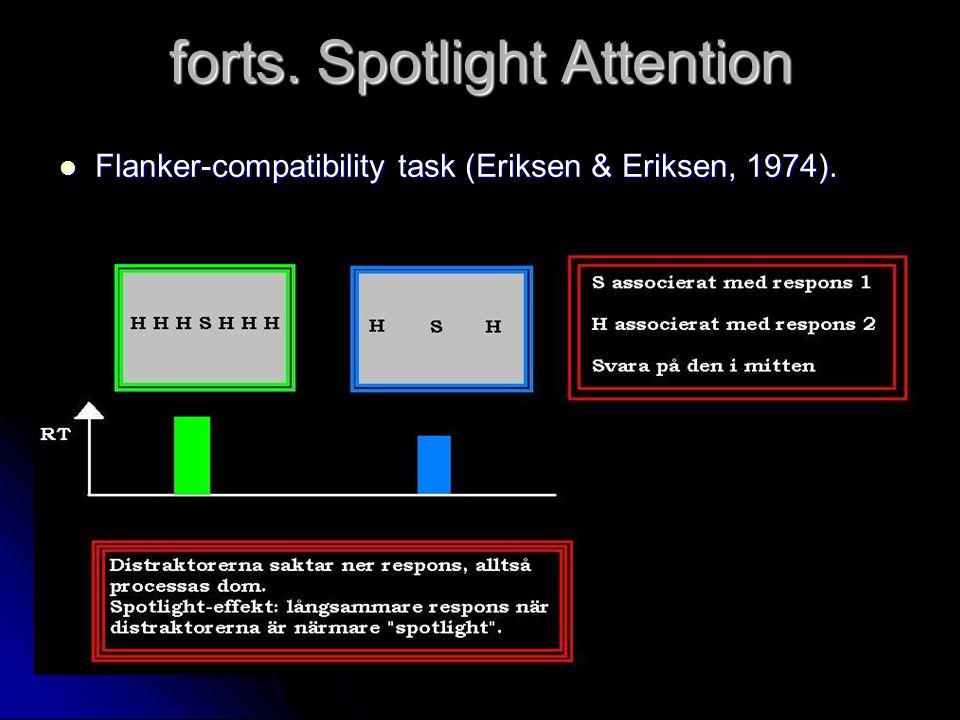 forts. Spotlight Attention
