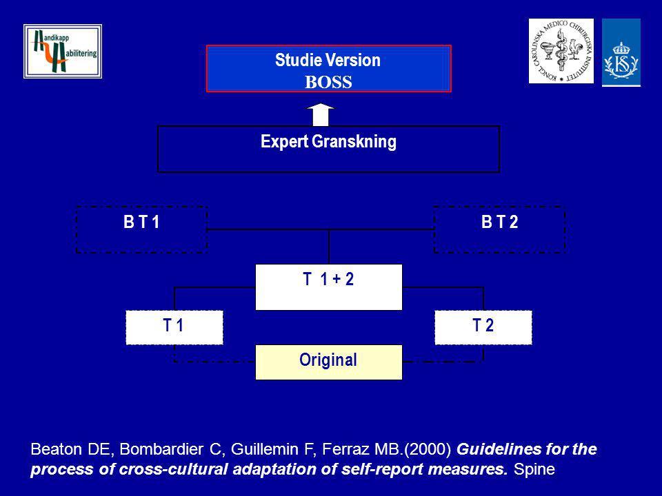 Original T 1 T 2 T 1 + 2 B T 1 B T 2 Expert Granskning Studie Version