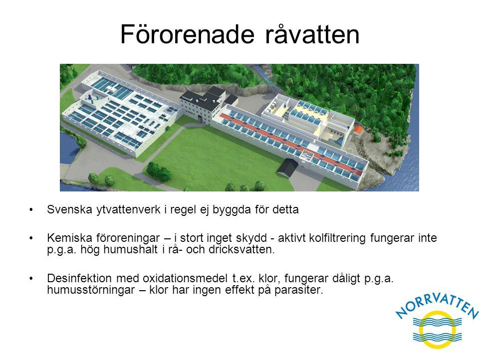 Förorenade råvatten Svenska ytvattenverk i regel ej byggda för detta