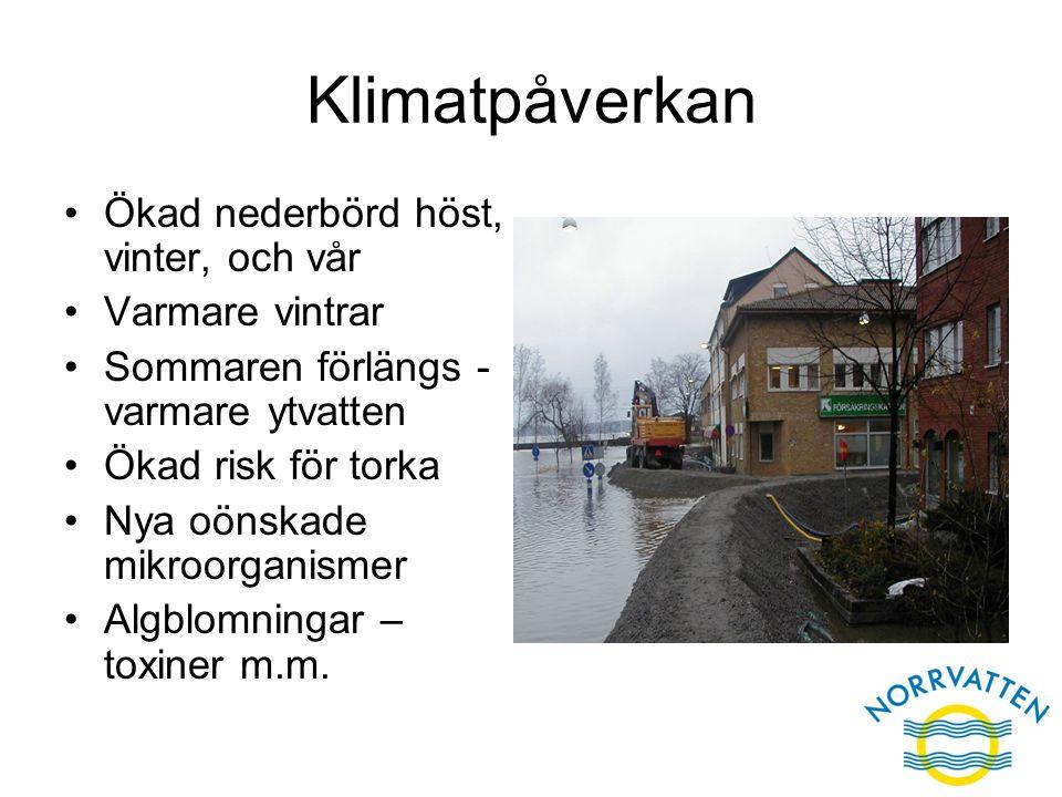 Klimatpåverkan Ökad nederbörd höst, vinter, och vår Varmare vintrar