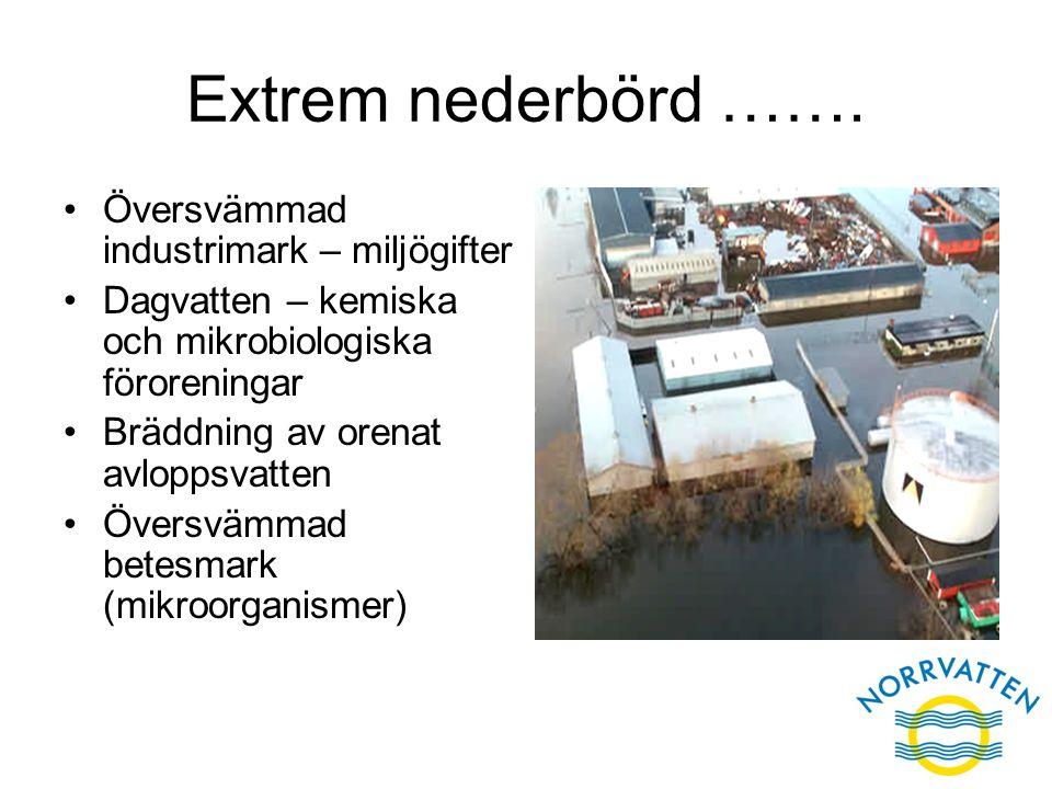 Extrem nederbörd ……. Översvämmad industrimark – miljögifter