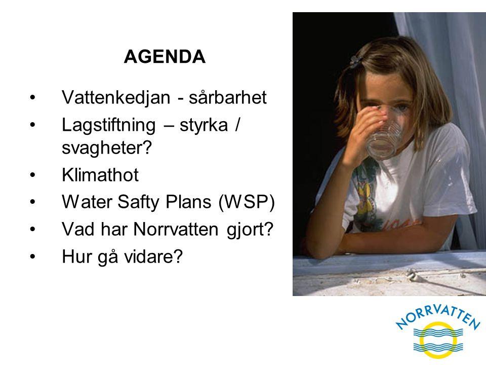 AGENDA Vattenkedjan - sårbarhet. Lagstiftning – styrka / svagheter Klimathot. Water Safty Plans (WSP)