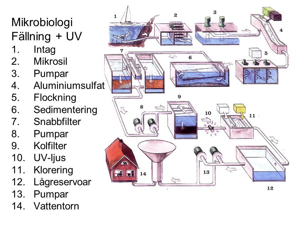 Mikrobiologi Fällning + UV 1. Intag 2. Mikrosil 3. Pumpar 4