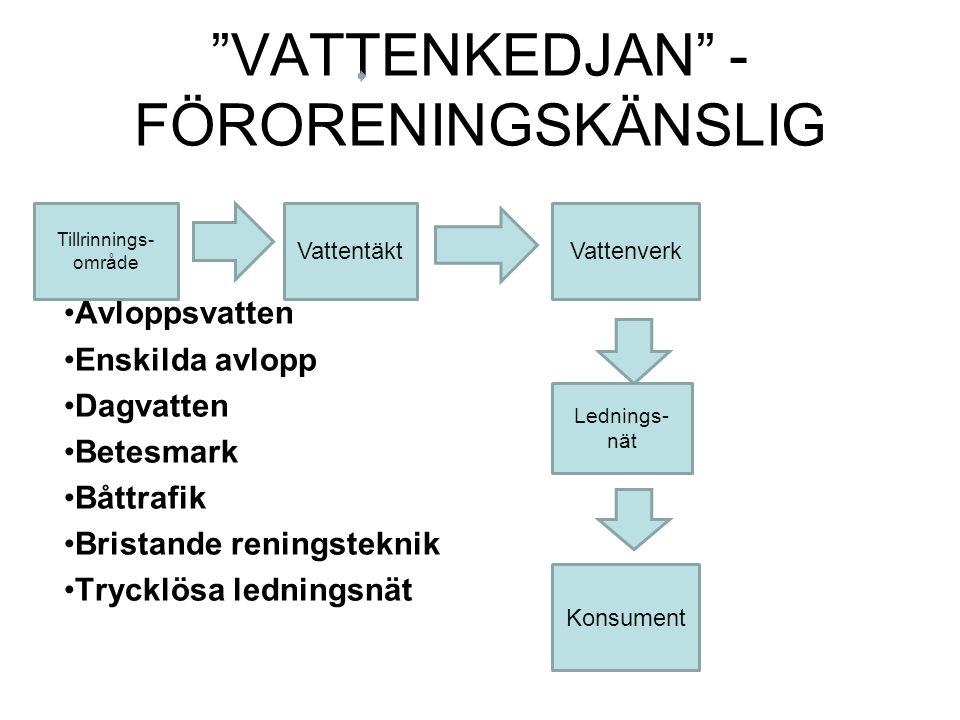 VATTENKEDJAN - FÖRORENINGSKÄNSLIG