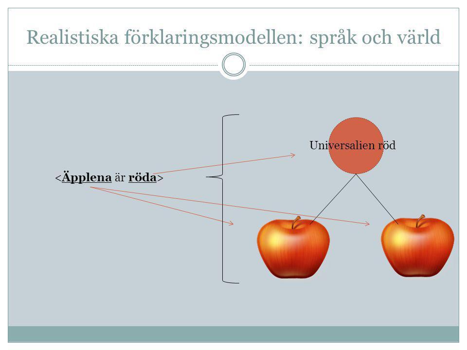 Realistiska förklaringsmodellen: språk och värld