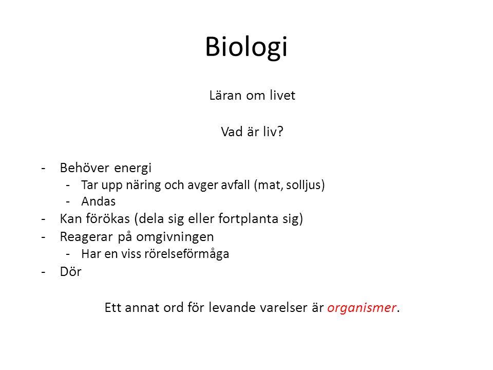 Ett annat ord för levande varelser är organismer.