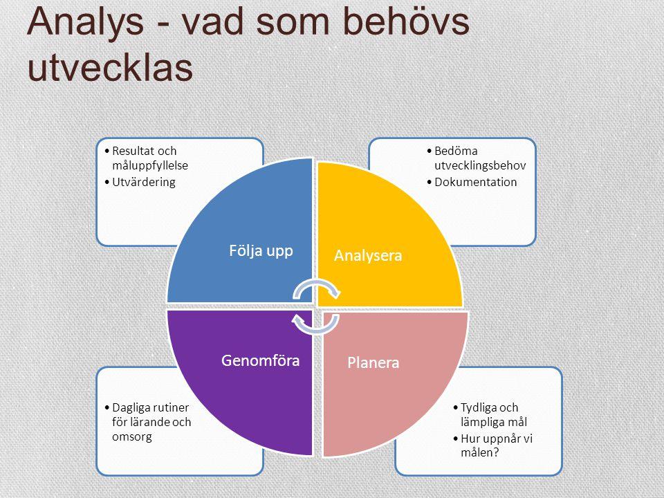 Analys - vad som behövs utvecklas