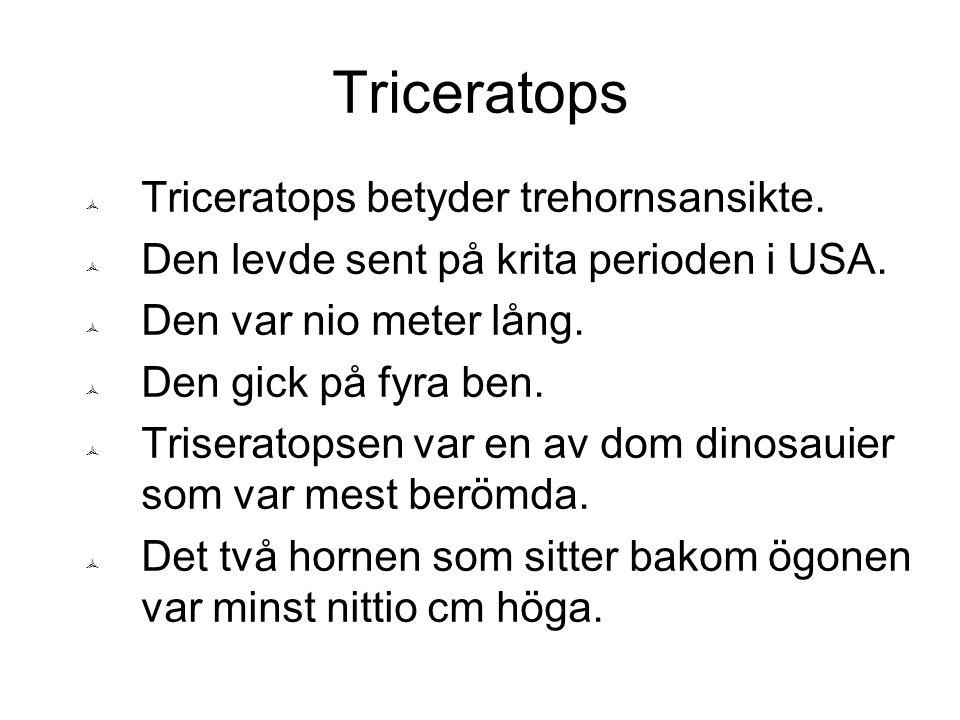 Triceratops Triceratops betyder trehornsansikte.