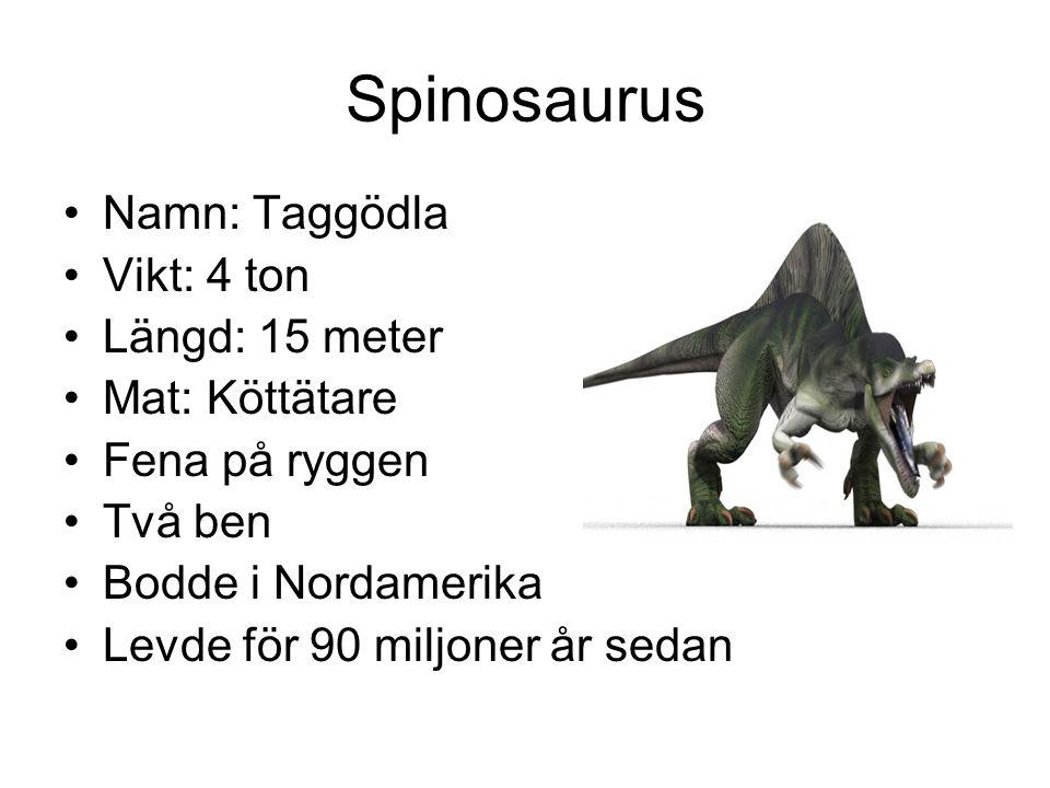 Spinosaurus Namn: Taggödla Vikt: 4 ton Längd: 15 meter Mat: Köttätare
