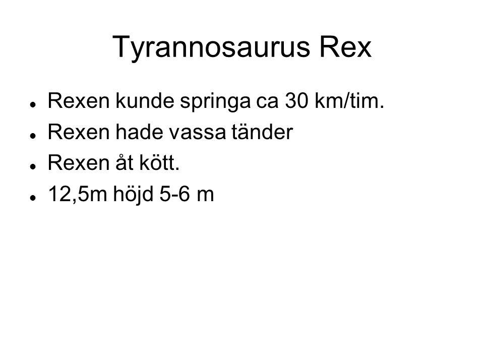 Tyrannosaurus Rex Rexen kunde springa ca 30 km/tim.