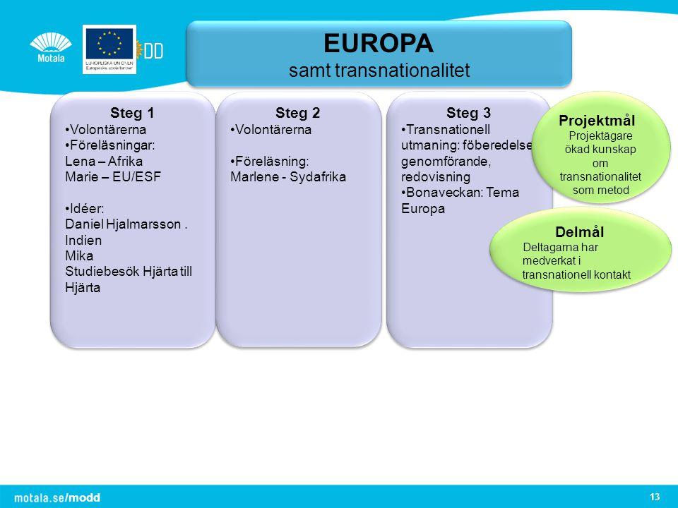 EUROPA samt transnationalitet Steg 1 Steg 2 Steg 3 Projektmål Delmål