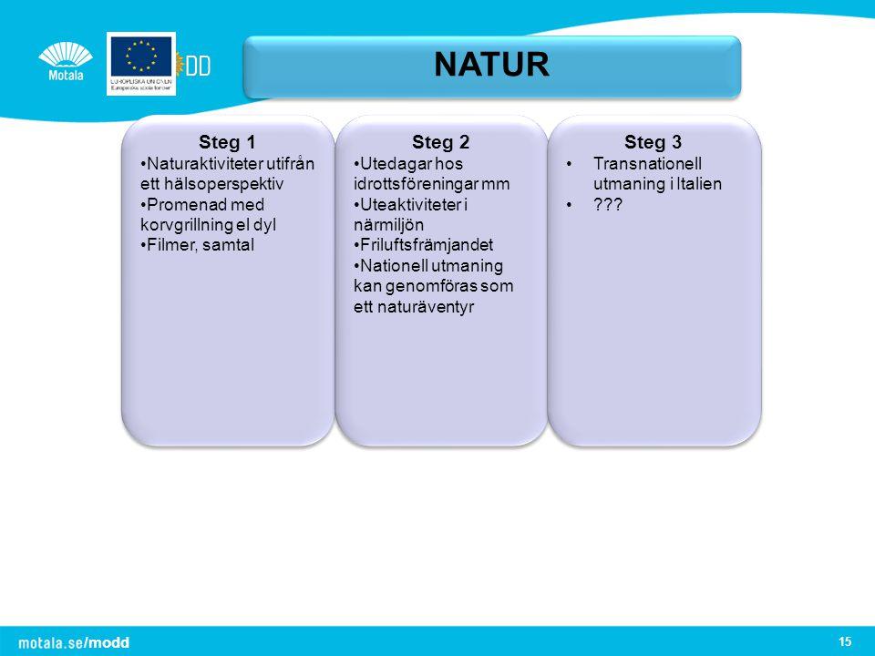 NATUR Steg 1. Naturaktiviteter utifrån ett hälsoperspektiv. Promenad med korvgrillning el dyl. Filmer, samtal.