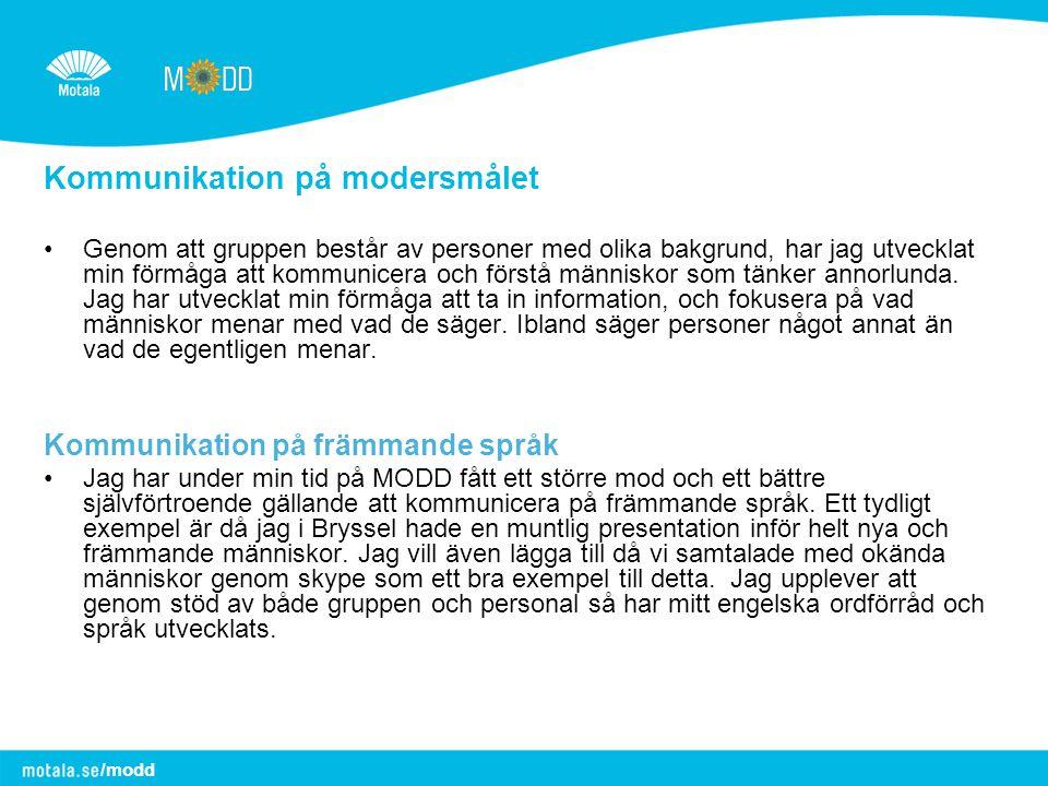 Kommunikation på modersmålet