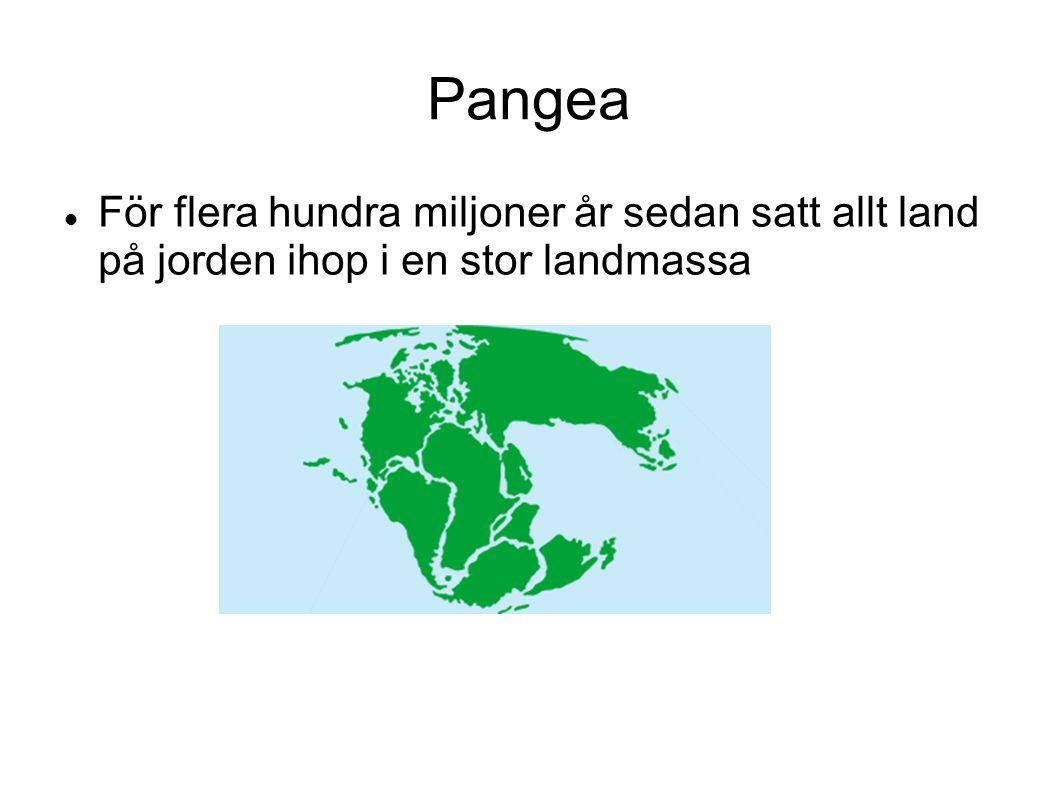 Pangea För flera hundra miljoner år sedan satt allt land på jorden ihop i en stor landmassa