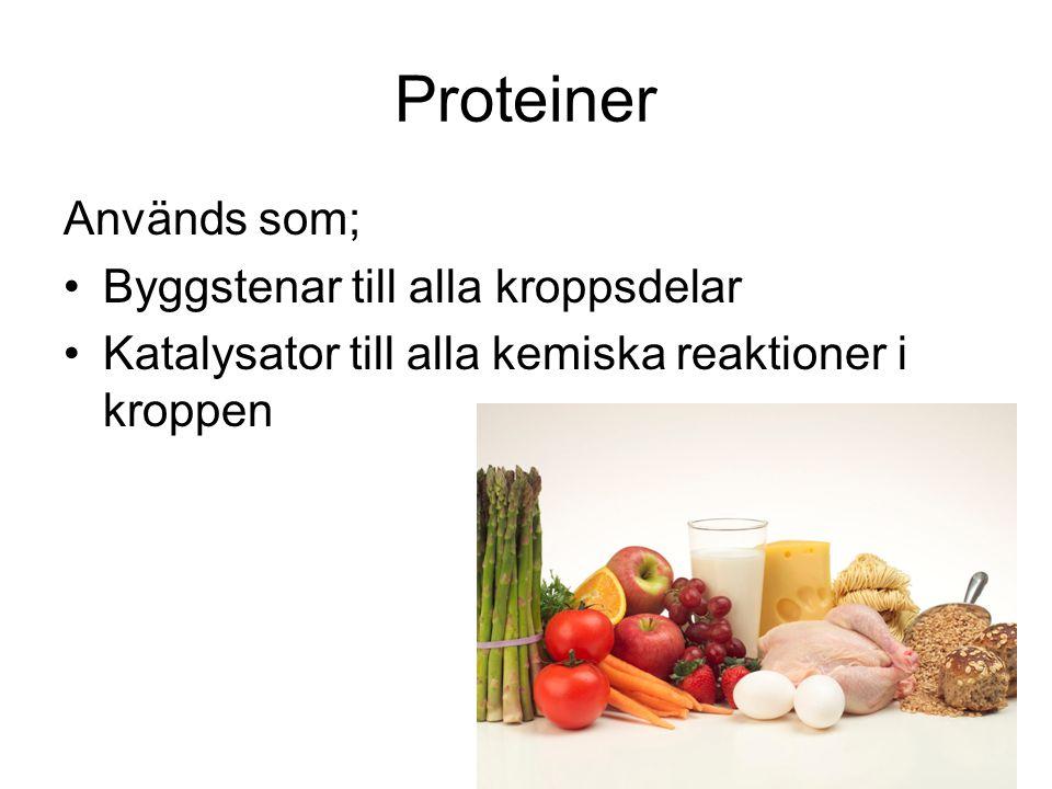 Proteiner Används som; Byggstenar till alla kroppsdelar