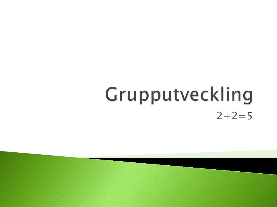 Grupputveckling 2+2=5