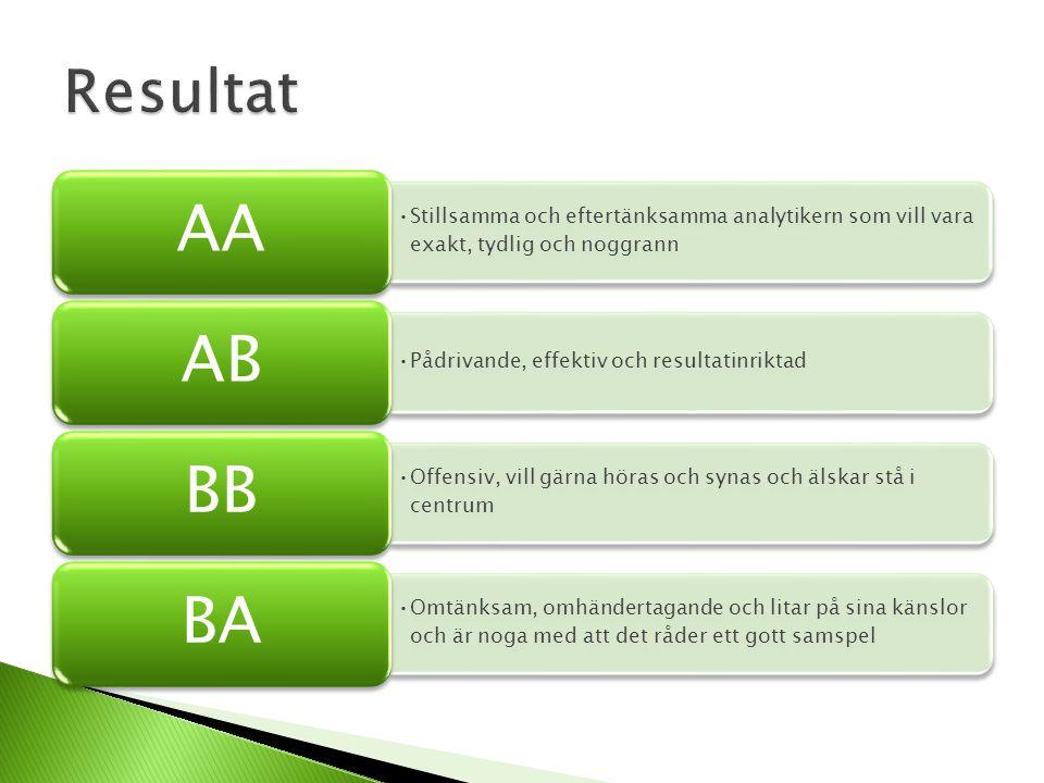 Resultat AA. Stillsamma och eftertänksamma analytikern som vill vara exakt, tydlig och noggrann. AB.