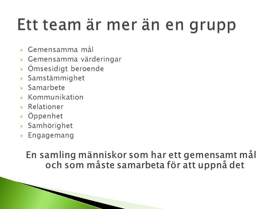 Ett team är mer än en grupp