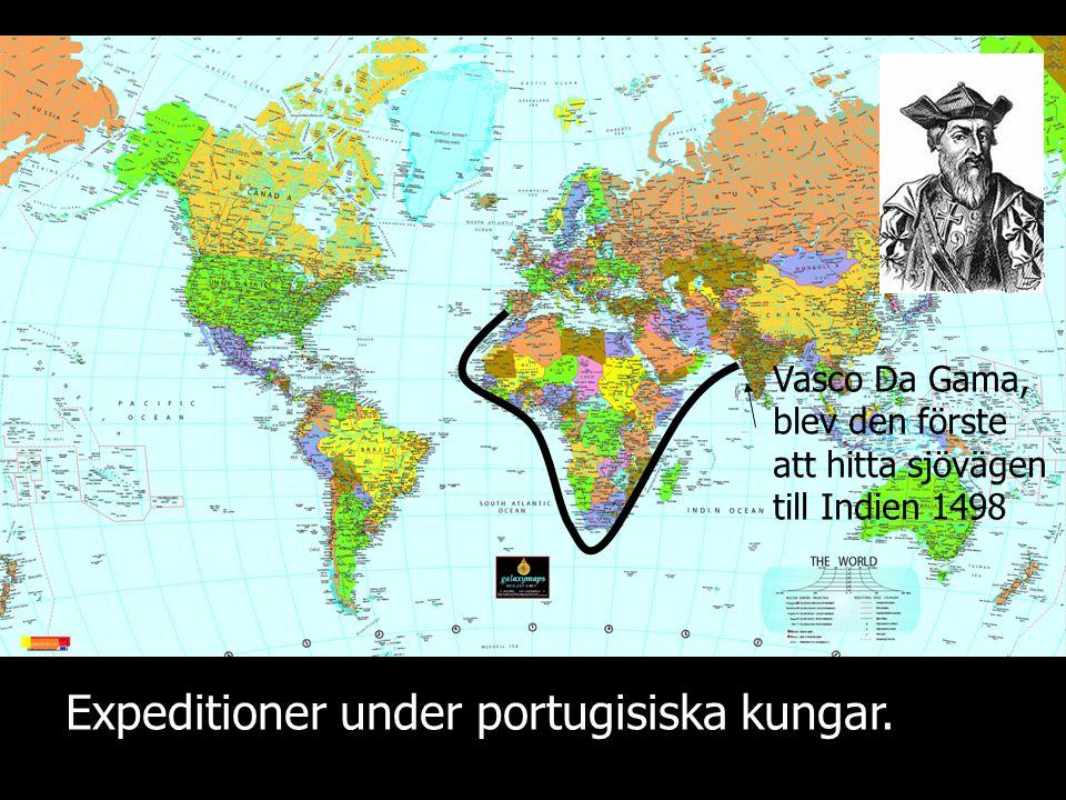 Expeditioner under portugisiska kungar.