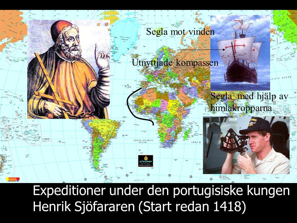 Expeditioner under den portugisiske kungen