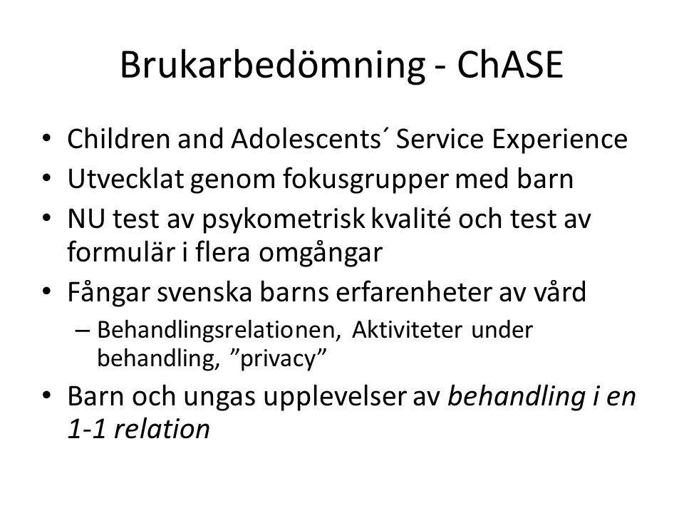 Brukarbedömning - ChASE