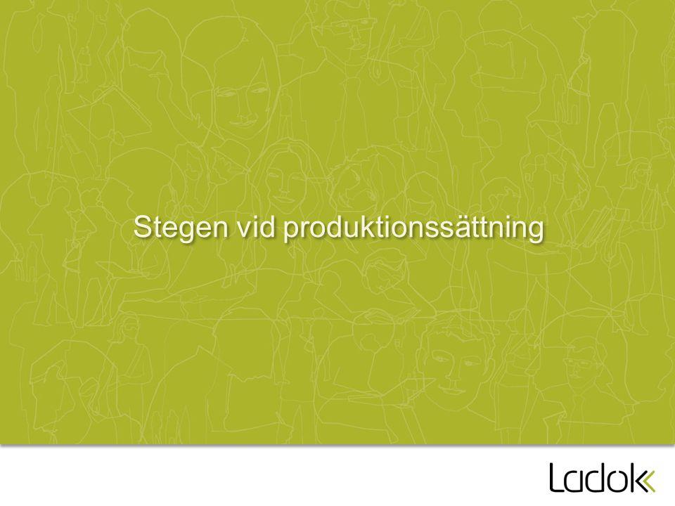 Stegen vid produktionssättning