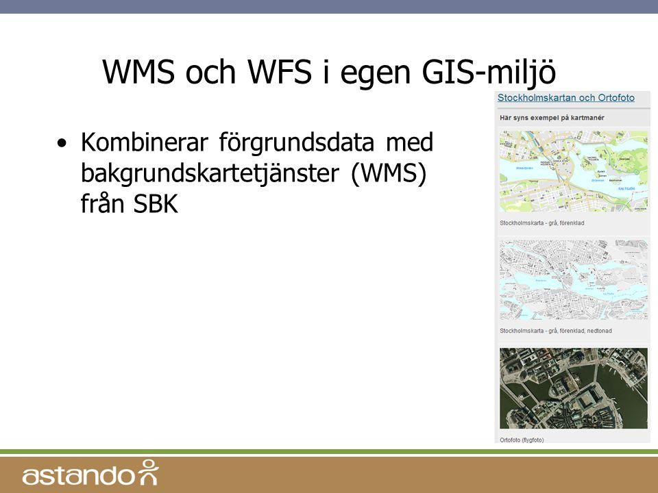 WMS och WFS i egen GIS-miljö