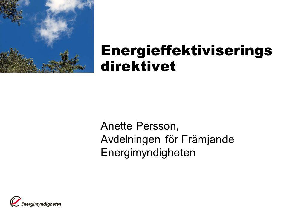 Energieffektiviserings direktivet