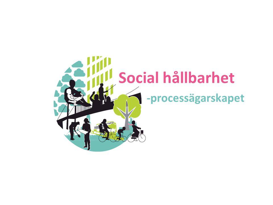 Social hållbarhet -processägarskapet 2017-04-07