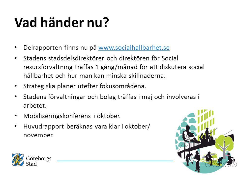 Vad händer nu Delrapporten finns nu på www.socialhallbarhet.se