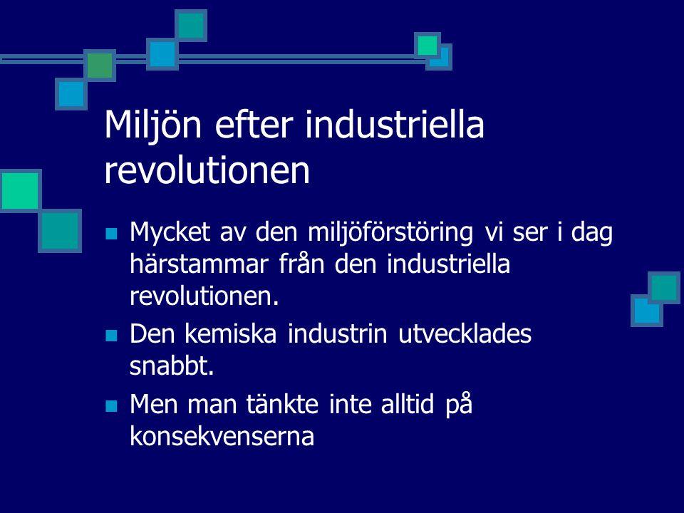 Miljön efter industriella revolutionen