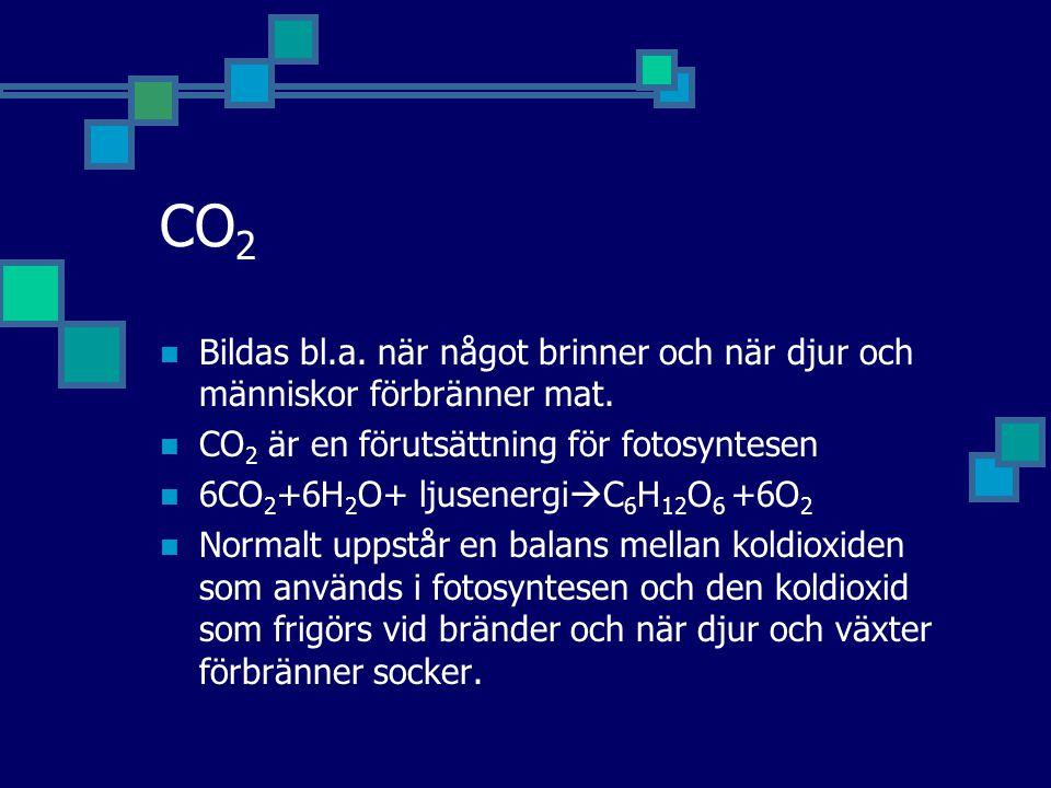 CO2 Bildas bl.a. när något brinner och när djur och människor förbränner mat. CO2 är en förutsättning för fotosyntesen.