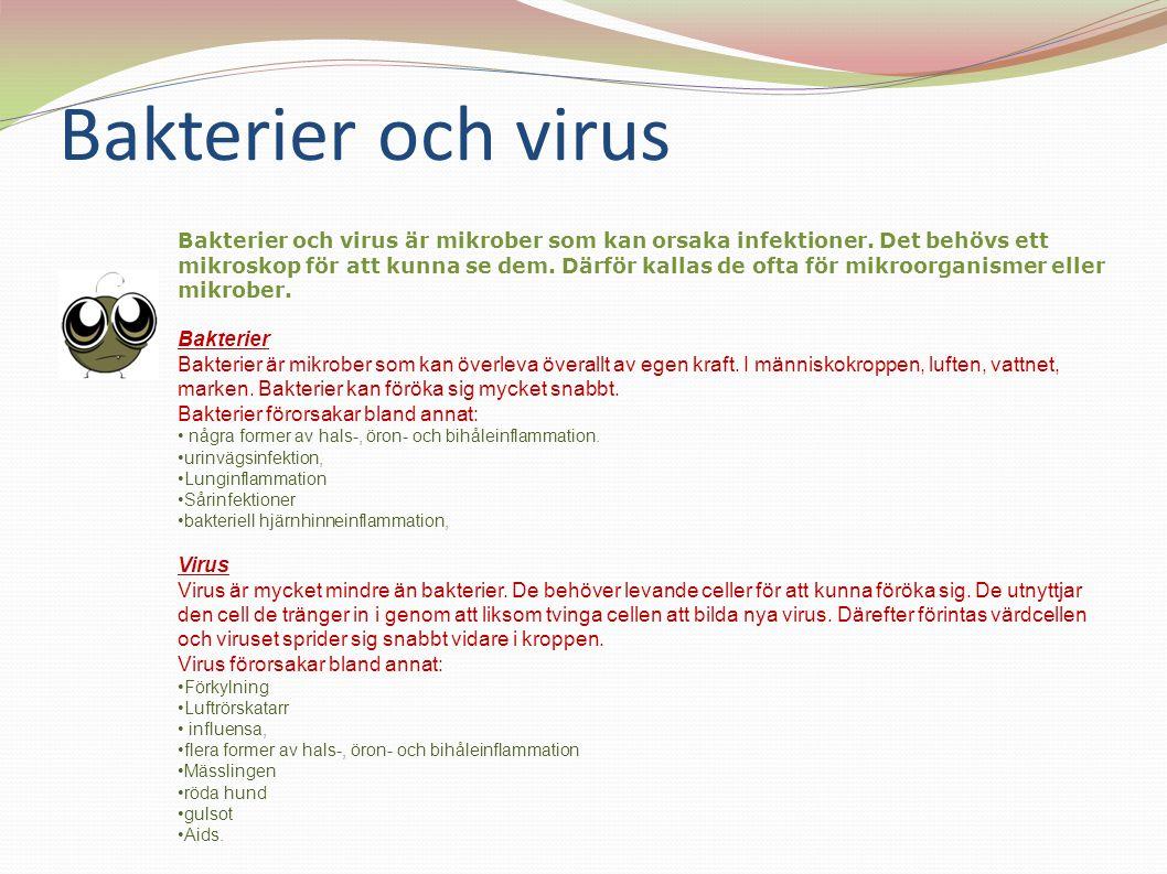 Bakterier och virus