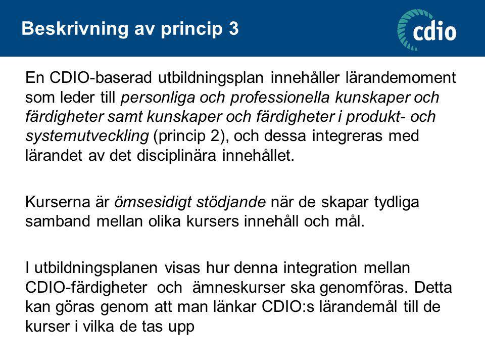 Beskrivning av princip 3