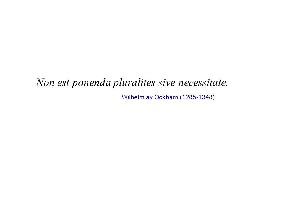 Non est ponenda pluralites sive necessitate.
