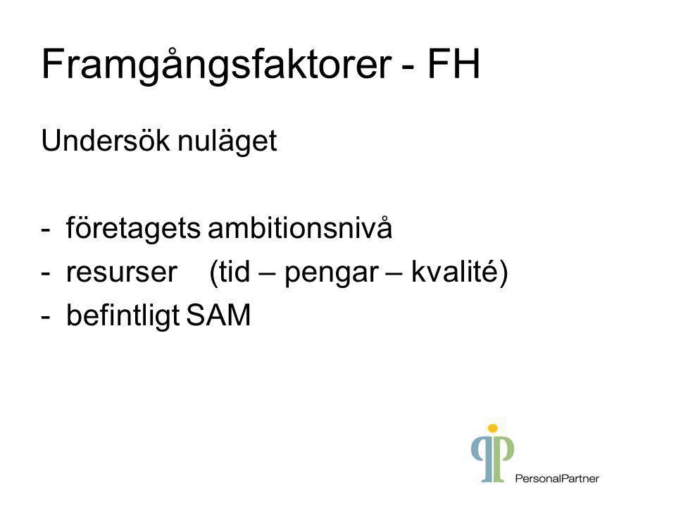 Framgångsfaktorer - FH