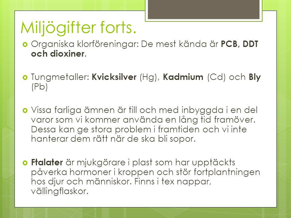 Miljögifter forts. Organiska klorföreningar: De mest kända är PCB, DDT och dioxiner. Tungmetaller: Kvicksilver (Hg), Kadmium (Cd) och Bly (Pb)
