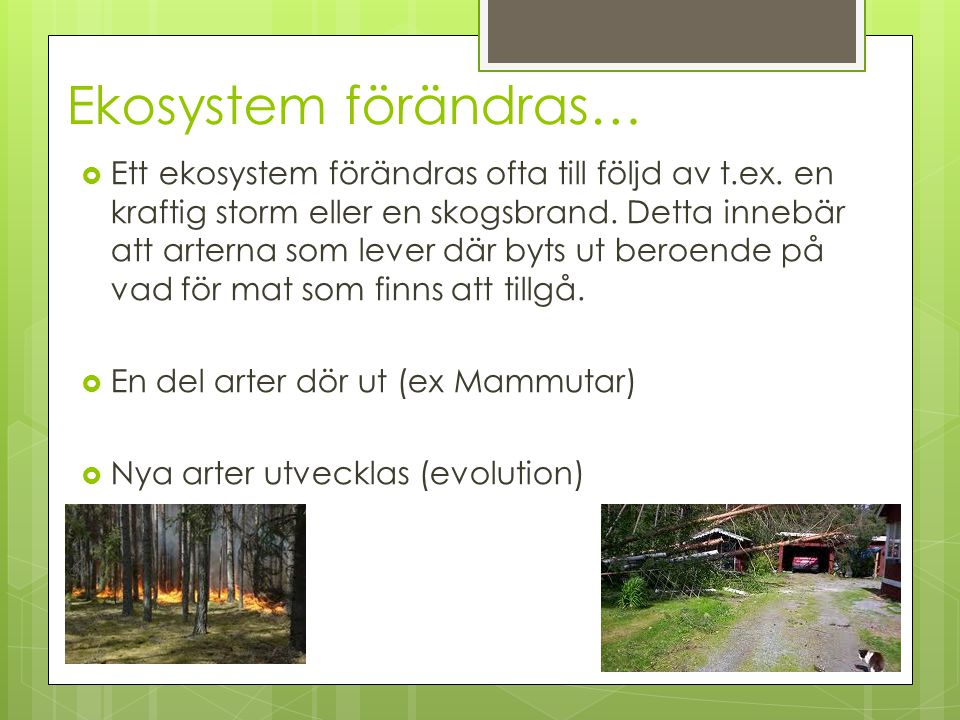 Ekosystem förändras…
