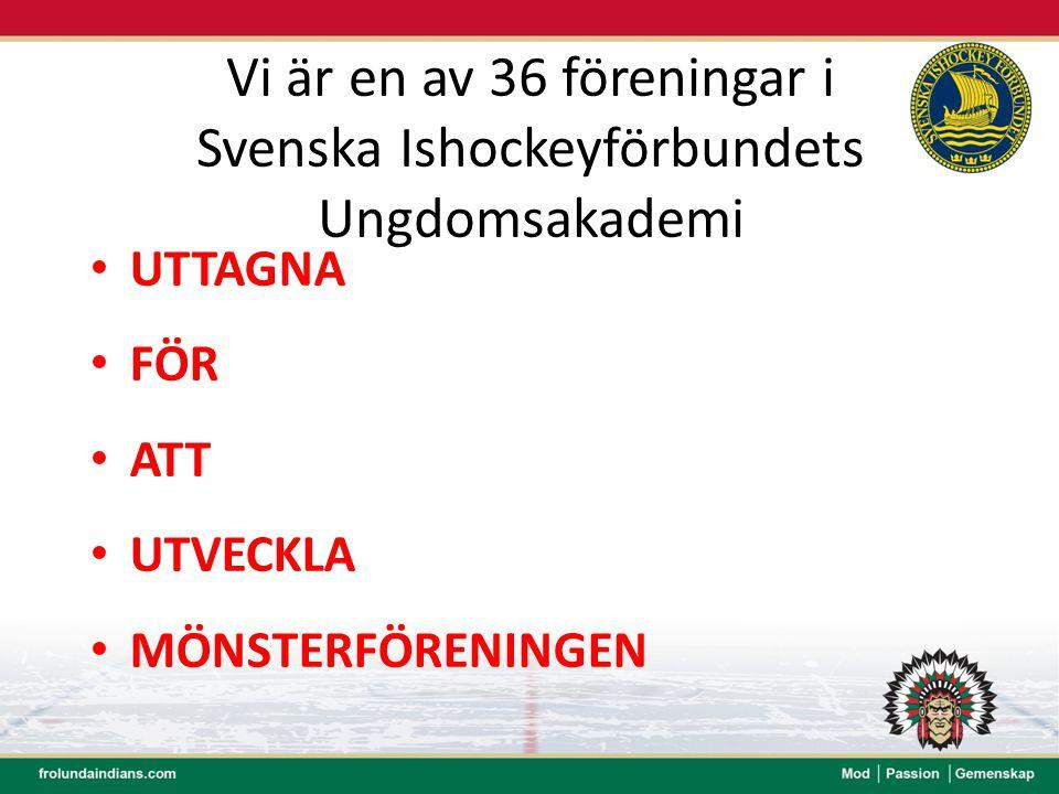 Vi är en av 36 föreningar i Svenska Ishockeyförbundets Ungdomsakademi