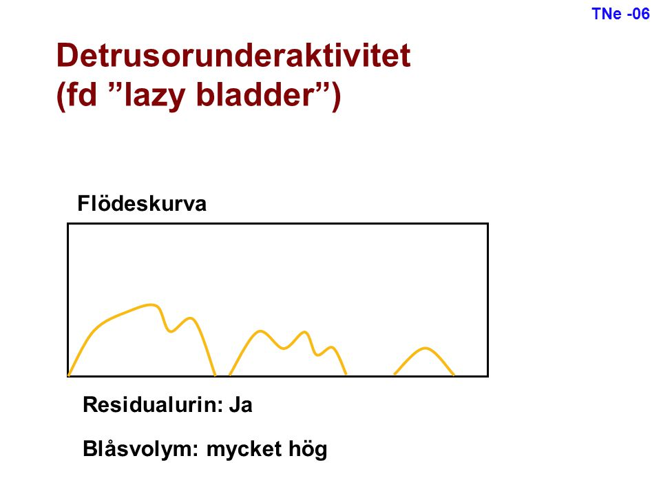 Detrusorunderaktivitet (fd lazy bladder )