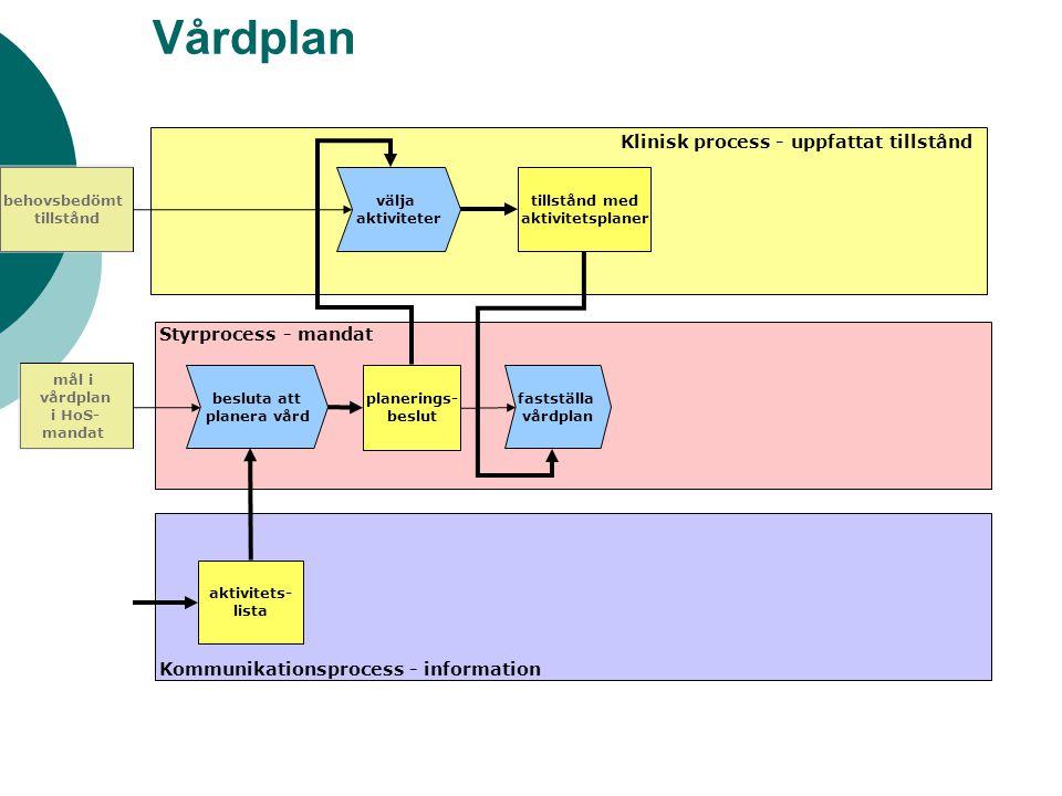 Vårdplan Klinisk process - uppfattat tillstånd Styrprocess - mandat