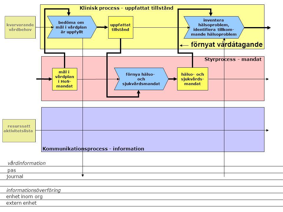 förnyat vårdåtagande Klinisk process - uppfattat tillstånd