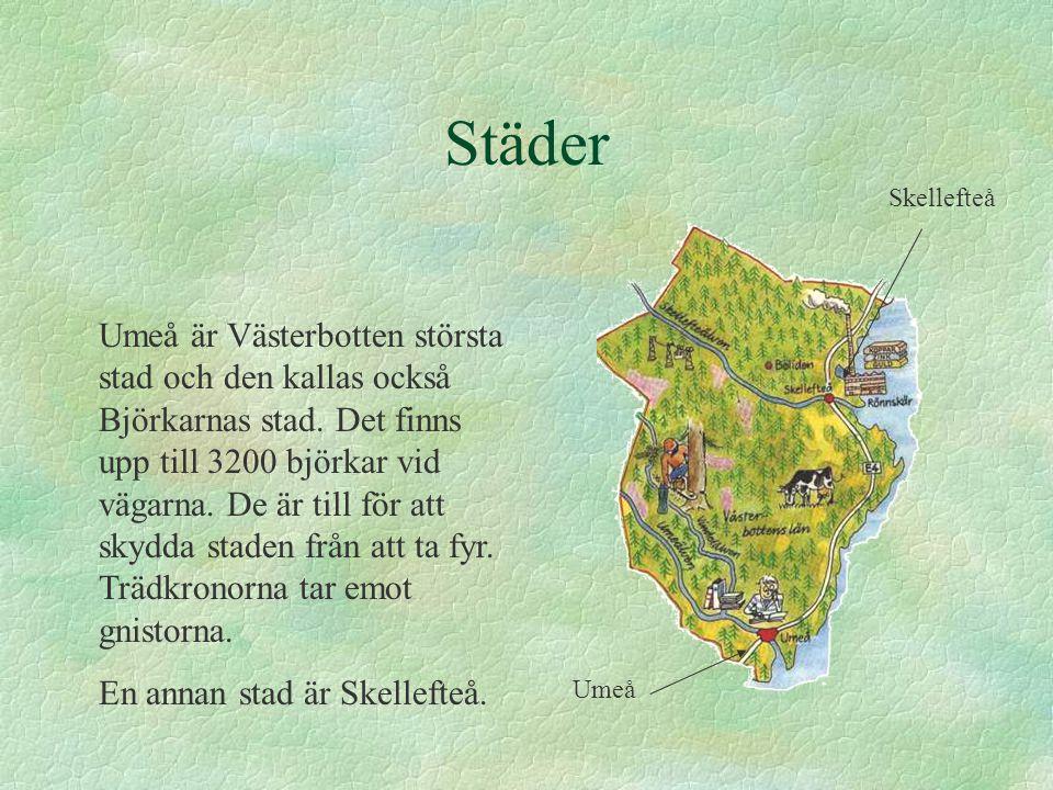 Städer Skellefteå.