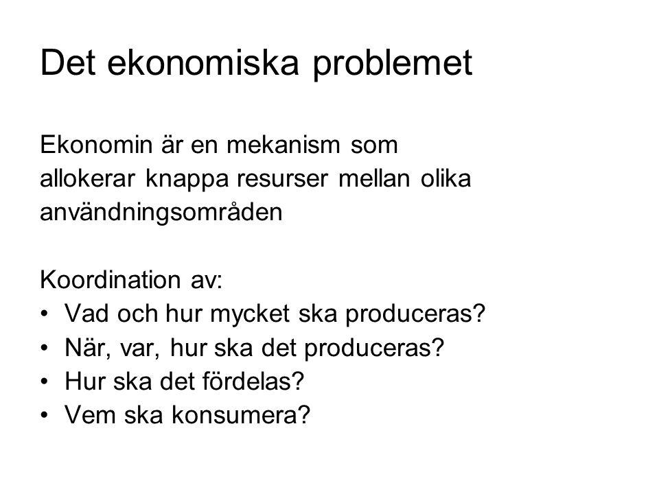 Det ekonomiska problemet