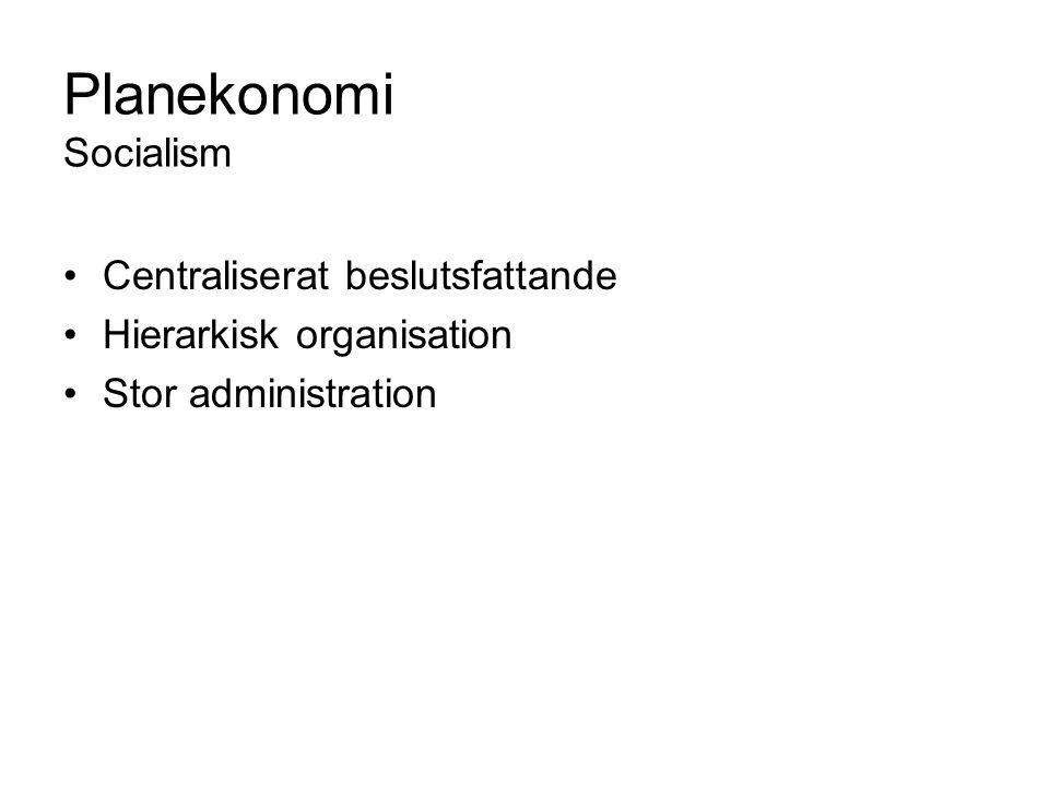 Planekonomi Socialism